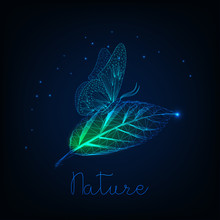Futuristic Glowing Low Poly Butterfly Sitting On Green Leaf And Text Nature On Dark Blue Background.