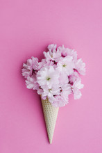 Ice Cream Cornet Filled With Cherry Blossom