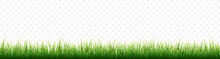Green Grass Border Set On Whit...