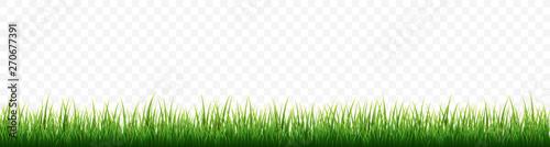 Fotografía Green grass border set on white background. Vector Illustration