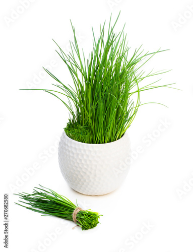 Obraz na płótnie Bunch of fresh chives and plant in pot isolated on white