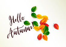 Poster With Leafs And Slogan ''Hello Autumn!''. 3D Paper Cut Effect.  Bright Minimalist Autumn Postcard. Autumn Leaf Litter. Vector Illustration.