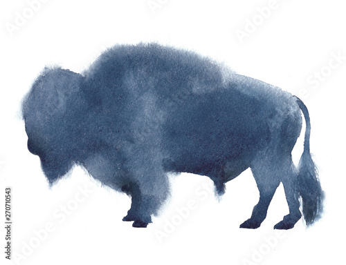 Valokuva  Watercolor realistic bison silhouette on white background