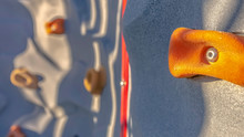Panorama Frame Bright Orange Foothold Or Handhold Of A Climbing Wall At A Playground
