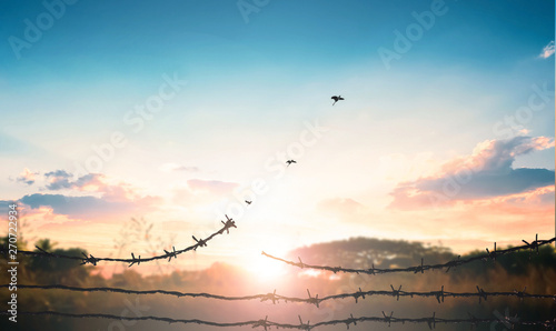 World Refugee Day concept: Broken barbed wire Wallpaper Mural