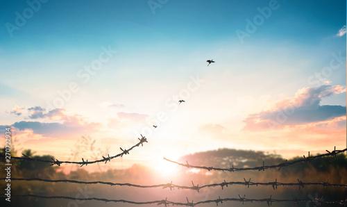 World Refugee Day concept: Broken barbed wire Canvas Print