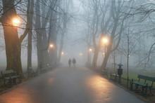 Couple Walking In Mist. Octobe...