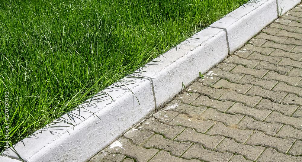 Fototapeta White Painted Borders in the Park