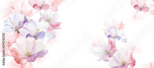 Fotografie, Obraz Elegant rose flower