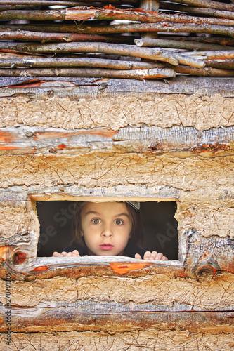 Cuadros en Lienzo  Curious child, boy, peering from a small window in wooden shrub