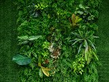 artificial green plant wall