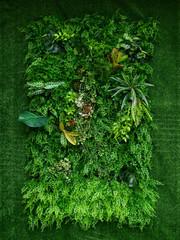 Panel Szklany Podświetlane Inspiracje na wiosnę artificial green plant wall