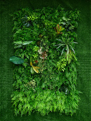 Panel Szklany Inspiracje na wiosnę artificial green plant wall