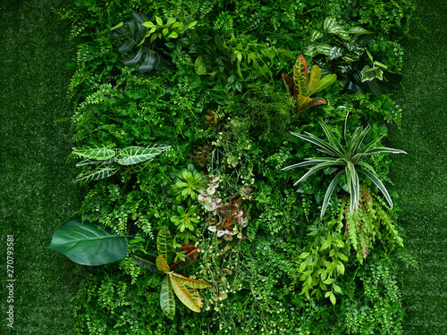 Spoed Foto op Canvas Planten artificial green plant wall