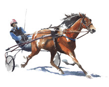 Horse Race Sport Jockey Watercolor Painting Illustration Isolated On White Background