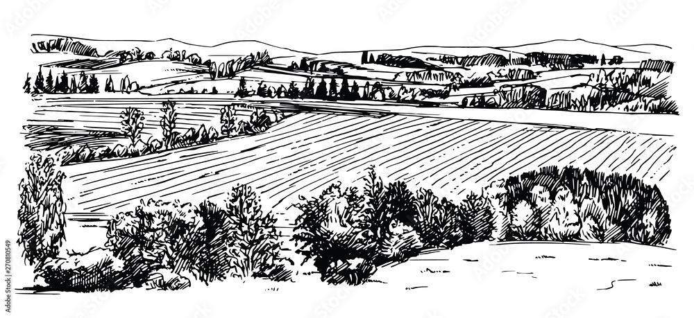 Fototapety, obrazy: Rural landscape. Hand drawn set.
