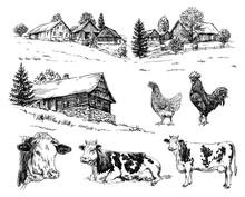 Farm, Cows, Rural Houses. Hand...