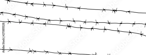 Fotografia, Obraz  Isolated barbed wire on country border