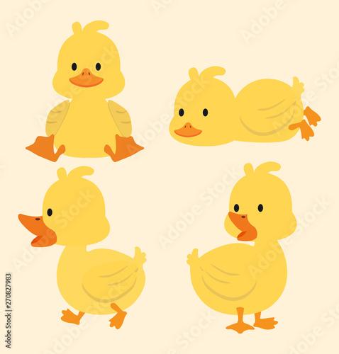 Fototapeta Cute yellow ducks cartoon set
