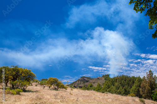 Las Cumbres, May, controlled fire Canvas Print