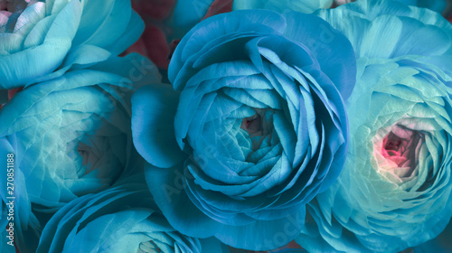 Photo  turquoise anemone flower bouquet