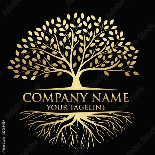 Valokuva Tree and roots logo illustration