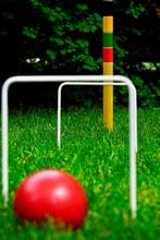 Croquet Ball On The Grass