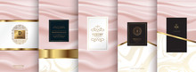 Collection Of Design Elements,labels,icon,frames, For Logo,packaging,design Of Luxury Products.for Perfume,soap,wine, Lotion.Made With Isolated On Pink Background.vector Illustration