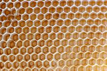 The Texture Of Empty Wax Honey...