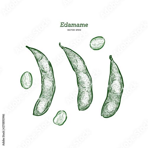 Carta da parati Hand drawn sketch style edamame green beans sketches set.