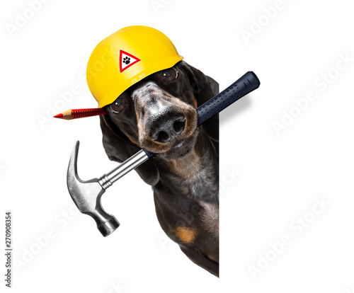 Canvas Prints Crazy dog handyman worker hammer dog with helmet