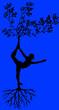 Leinwanddruck Bild - albero dello yoga