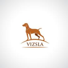 Vizsla Dog Symbol - Vector Ill...