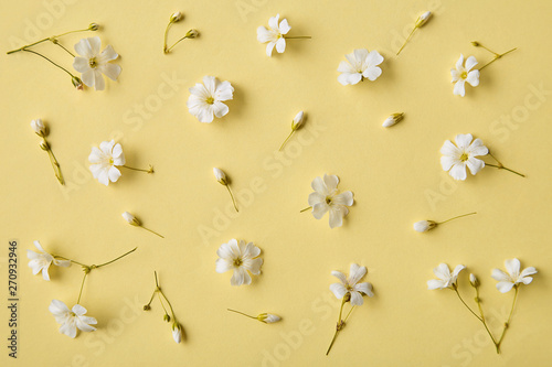Spring flowers pattern on a yellow background. Romantic blossom floral decoration design viewed from above. Top view