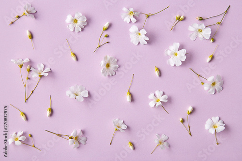 Spring flowers pattern on a purple background. Romantic blossom floral decoration design viewed from above. Top view