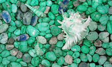 Pebble Stones On The Beach With Branched Murex Shell In Mint Green Color Tone