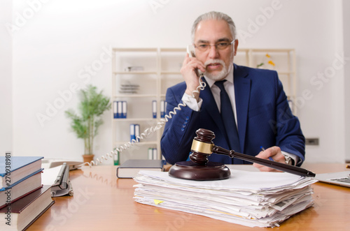 Fotografie, Obraz  Aged lawyer working in the courthouse