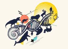 DNA Concept. Evolution Scale F...