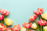 Fototapeta Tulipany - Spring flowers, tulips on pastel colors background. Retro vintage style.