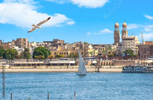 Seagull over Nile in Luxor Canvas Print