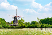 Old Wind Mill And Pasture With Wild Blossoming Flowers, Dutch Countryside Landscape