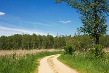 Rural Sand Road Through Summer...