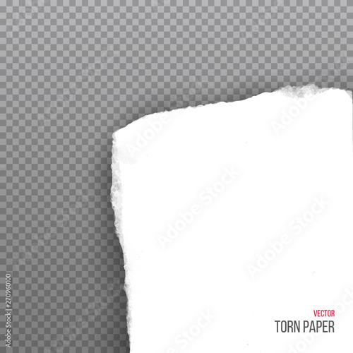 Realistic torn white corner of paper isolated on transparent background Canvas-taulu