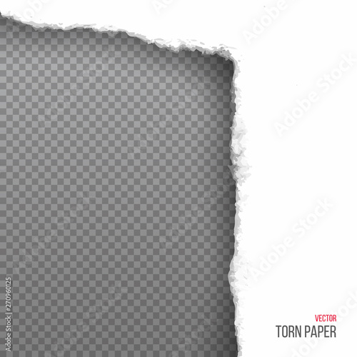 Valokuva  Realistic torn white corner of paper isolated on transparent background