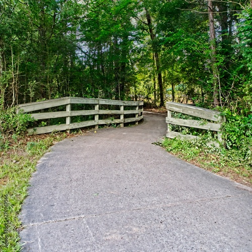 Photo Walking Trail in the Woods Through Trees with Wooden Gaurd Rails
