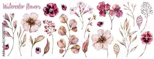 Floral elements collection, watercolor flower set - fototapety na wymiar