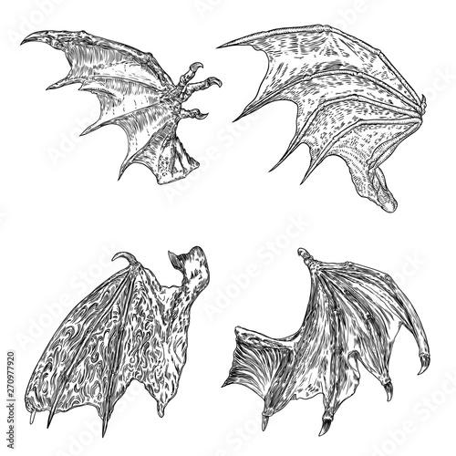 Set of hand drawn vintage etched woodcut fallen angel or vampire detailed wings Fototapeta