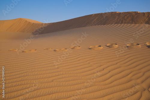 Poster de jardin Desert de sable UAE. Desert background close up