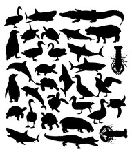 Animal Set, Art Vector Silhouette Design
