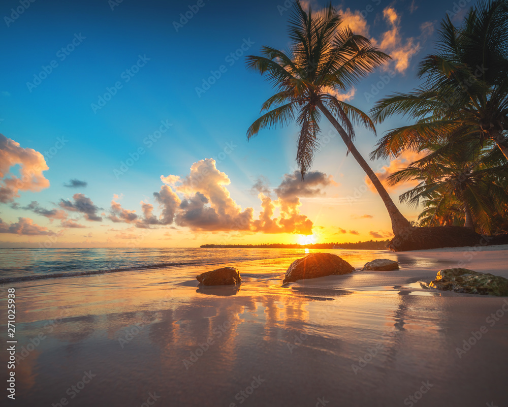 Fototapety, obrazy: Palm tree and tropical beach in Punta Cana, Dominican Republic